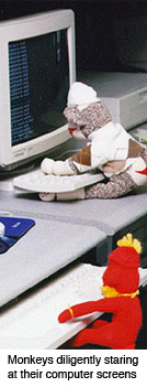 sock monkeys typing code
